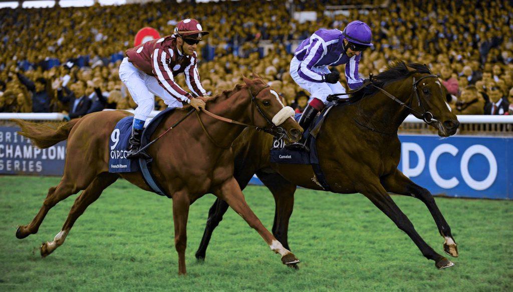 Horse racing popular sports